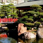 monaco_giardini_giapponesi_363